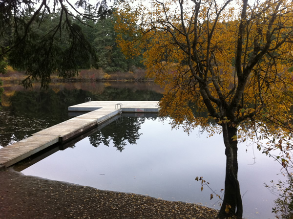 Dock at Prior Lake near Victoria, BC in the fall.  Photograph by Adam Ungstad.