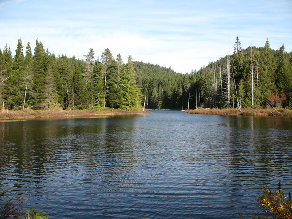 Grass Lake in Sooke, BC. Photograph by Tracy Clifford.